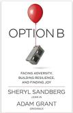 Option-B.png